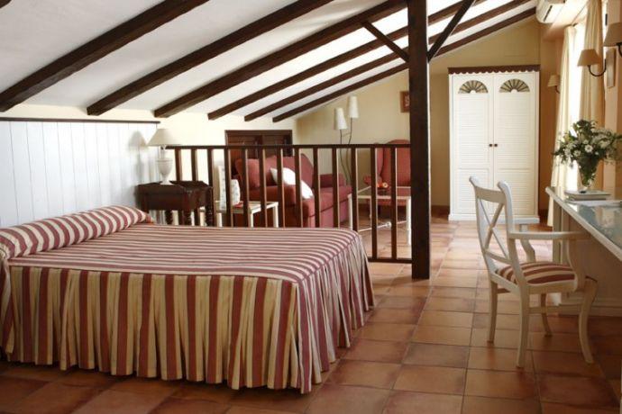 Junior suite con acceso directo a terraza y ducha de hidromasaje.Dispone de minibar.